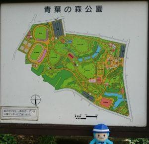 青葉の森公園・地図